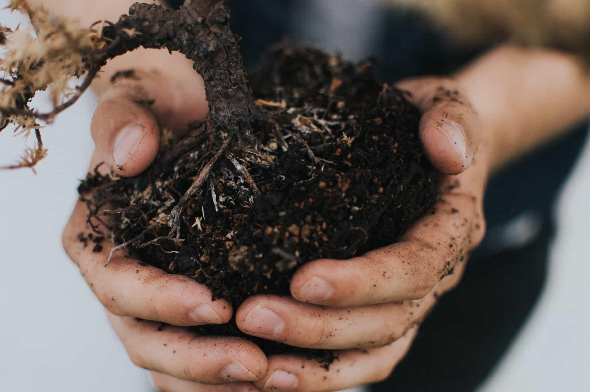 compost zero dechet